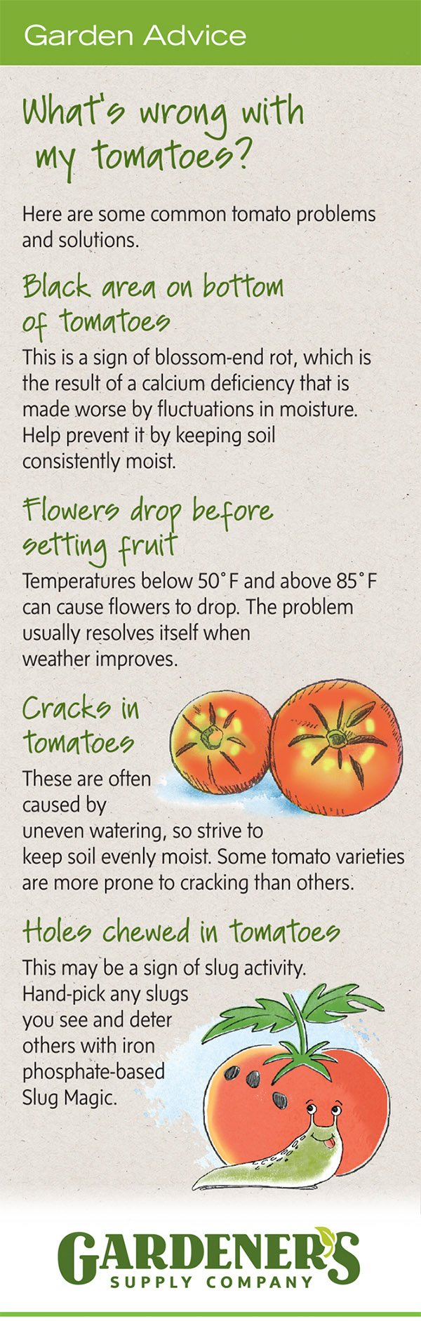 Troubleshooting tips for tomato problems