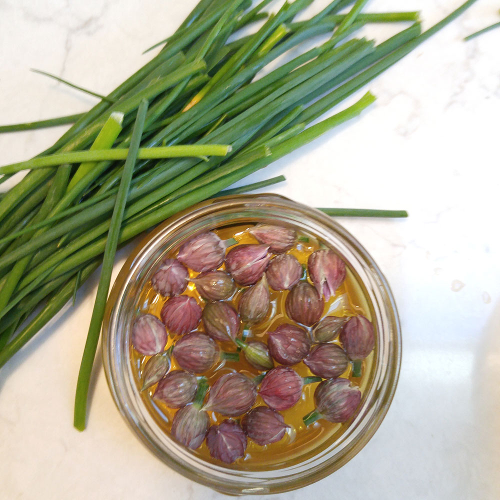 Pickled chive blossoms