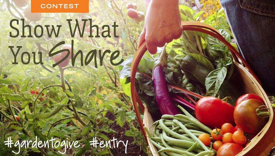 Show What Your Share Harvest photo