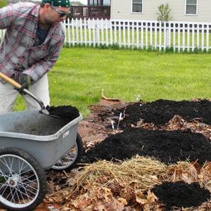 Adding compost in sheet mulch process