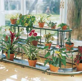Plant stand with houseplants