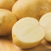 Elba potato