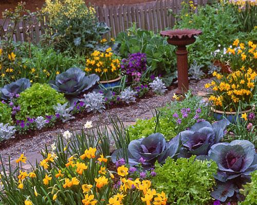 CUTLY DESIGNED GARDEN SHEARS THAT HARVEST FLOWERS FRUIT /& VEGETABLES EASIER!