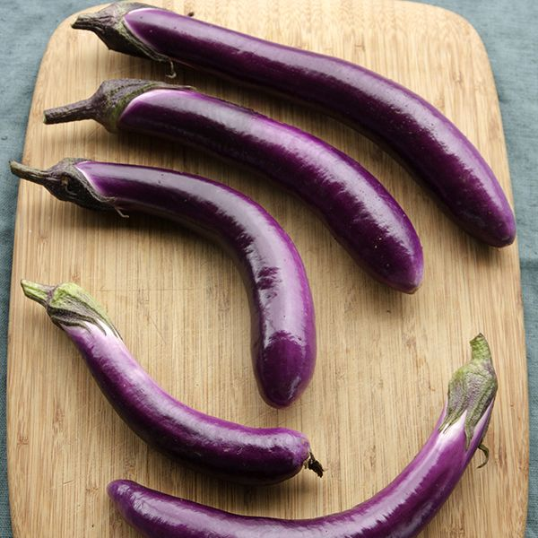 Ping Tung Long eggplant from High Mowing Organic Seeds