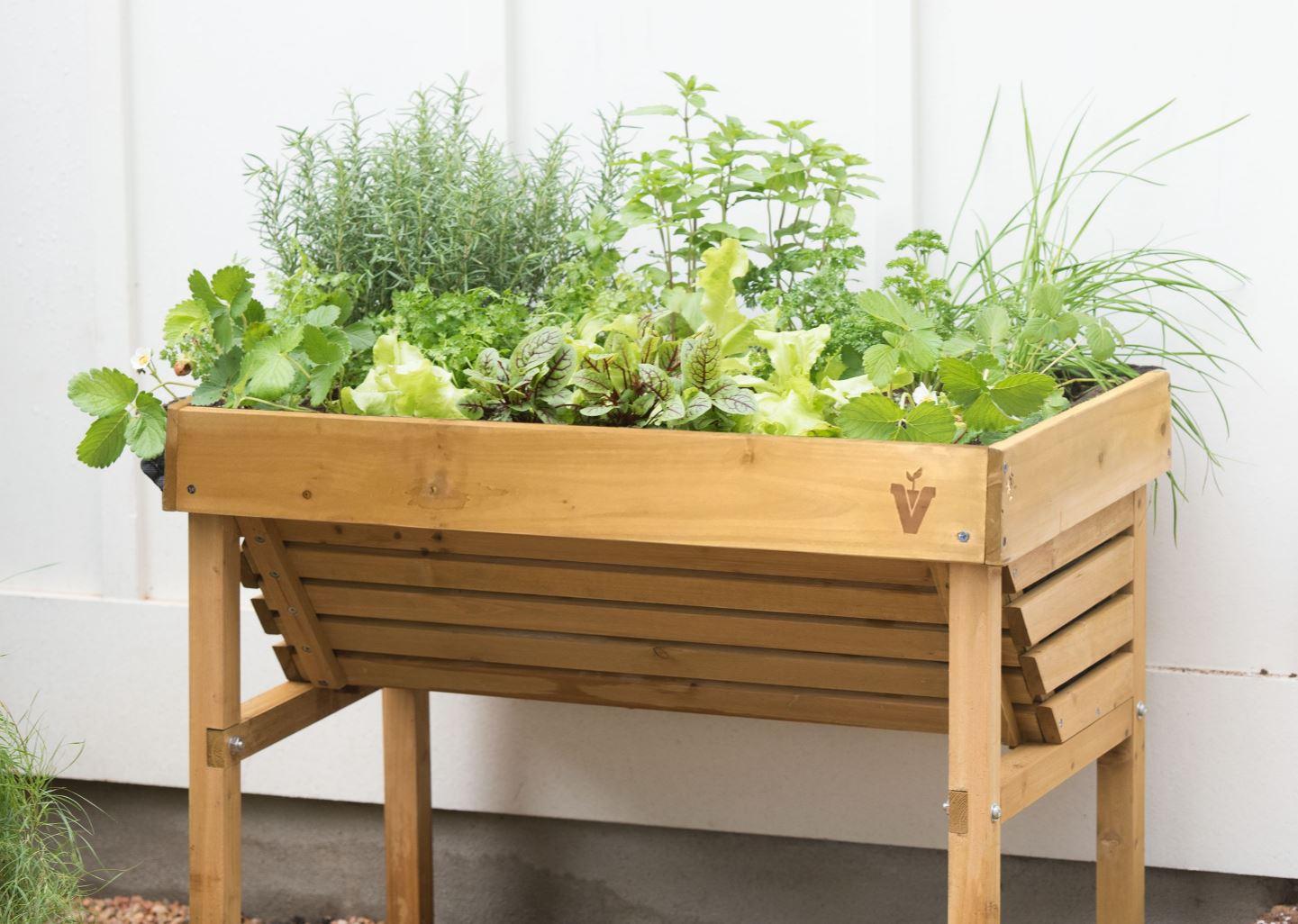 Herb Garden Growing Herbs Gardener, How To Start A Raised Herb Garden