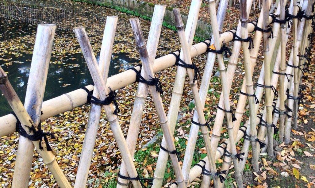 Make Japanese Bamboo Fences Trellises Gardener S Supply