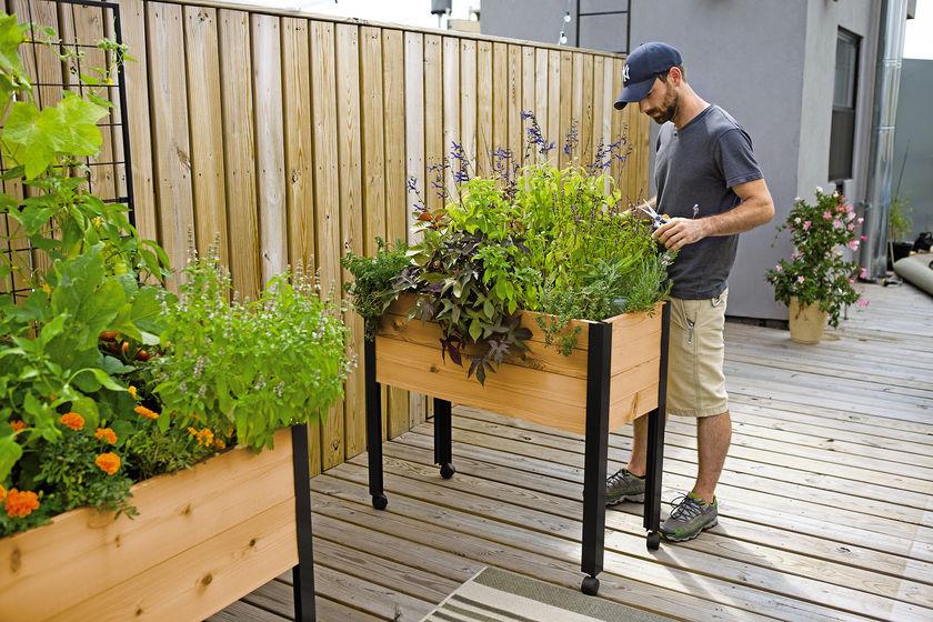 Herb Garden Designs With Plant Lists, Herb Garden Patio