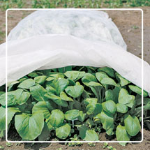 Plant Protectors & Row Covers